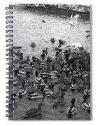 Dinner Is Served - Black And White Spiral Notebook