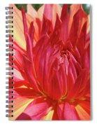 Dinner Plate Dahlia Flower Art Print Orange Baslee Troutman Spiral Notebook
