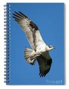Dinner To Go Spiral Notebook