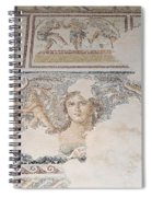Dionysus Mosaic Mona Lisa Of The Galilee Spiral Notebook