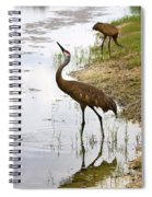 Dip In The Pond Spiral Notebook