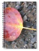 Direction Spiral Notebook