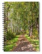 Dirt Path In A Birch Grove  Spiral Notebook