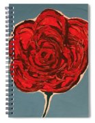 Dirty Rose Spiral Notebook