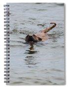 Dirty Water Dog Spiral Notebook