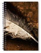 Discarded Feather Spiral Notebook