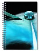 Discoveries Spiral Notebook