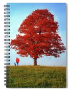Discovering Autumn Spiral Notebook