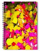 Discovering Joy Spiral Notebook