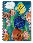 Discus Fantasy Spiral Notebook