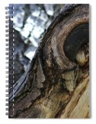Disfigured By Nature Spiral Notebook