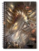 Disorderly Relativistic Interpretations Spiral Notebook