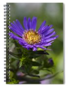 Display Of Softness Spiral Notebook