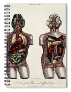 Dissected Torsos And Brains Spiral Notebook