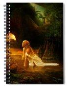 Distant Horizon Spiral Notebook