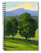 Distant Mountains Spiral Notebook