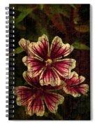 Distinctive Blossoms Spiral Notebook