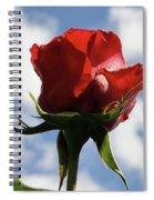 Diva Rose Spiral Notebook
