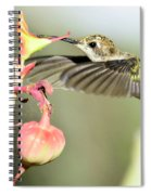 Dive In Spiral Notebook