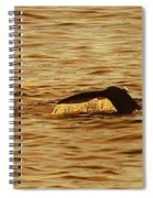 Diving Deep Spiral Notebook