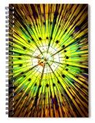 Diwali Lights 4 Spiral Notebook