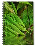 Djungle Spiral Notebook
