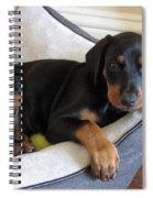 Doberman Puppy Spiral Notebook