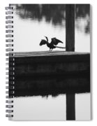 Dock Bird Pre Flight Spiral Notebook
