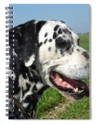 Dodgy The Dalmation Spiral Notebook