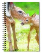Doe Nuzzles Her Fawn Spiral Notebook