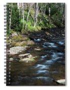 Doe River In April Spiral Notebook