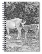 Doe With Twins Pencil Rendering Spiral Notebook
