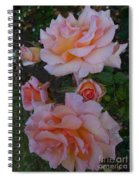 Does Roses Has Thorns Or Does Thorns Has Roses Spiral Notebook