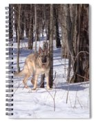 Dog Breed German Shepherd Spiral Notebook