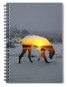 Dog Day Afternoon Spiral Notebook