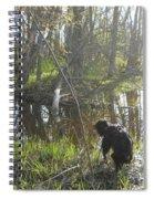 Dog Exploring Mississippi River Bank Spiral Notebook