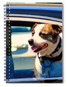 Dog In Car Spiral Notebook