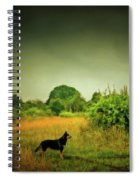 Dog In Chesire England Landscape Spiral Notebook