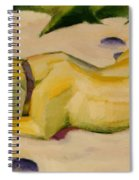 Dog Lying In The Snow Spiral Notebook