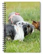 Dog Meeting  Spiral Notebook