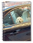 Dog On The Move Spiral Notebook