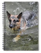 Dog Swimming In Cold Water Spiral Notebook