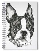 Dog Tags Spiral Notebook