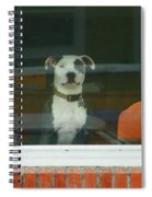 Doggie In The Window Spiral Notebook