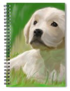 Doggie Seems Sad Spiral Notebook