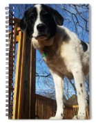 Doggone Cute  Spiral Notebook