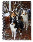 Dogs During Snowmageddon Spiral Notebook