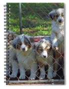 Dogs. Let Us Out #3 Spiral Notebook