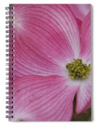 Dogwood Bloom Spiral Notebook