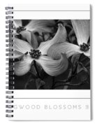 Dogwood Blossoms Bw Poster Spiral Notebook